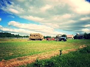 quintessential farm shot