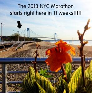 11 more weeks!