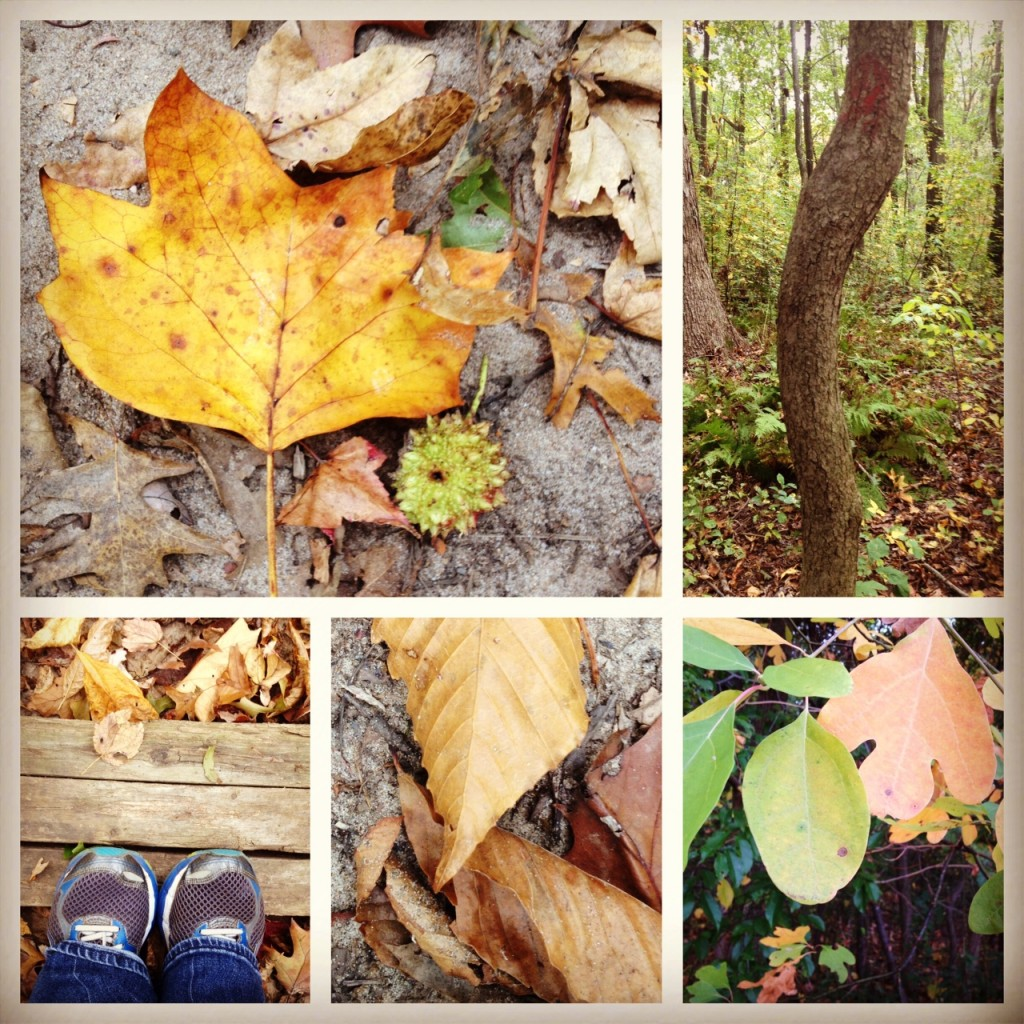 leafcollage2