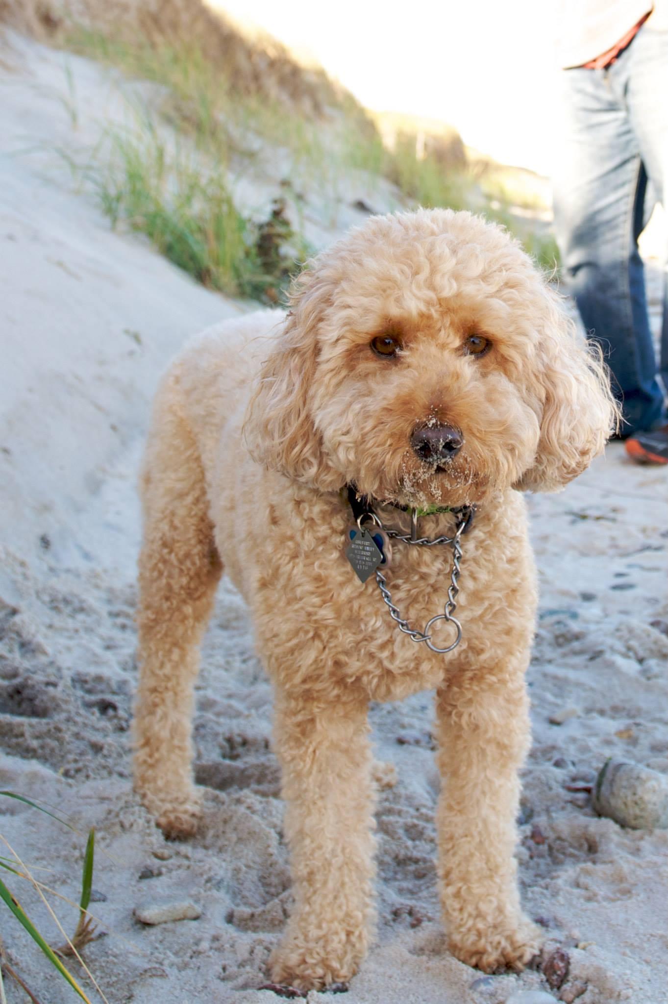 Ma, I got sand on my nose