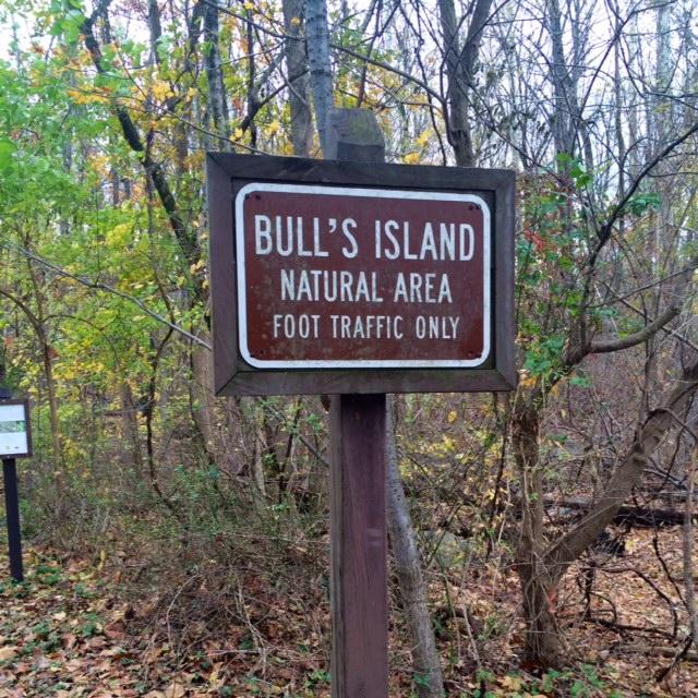 Bull's Island