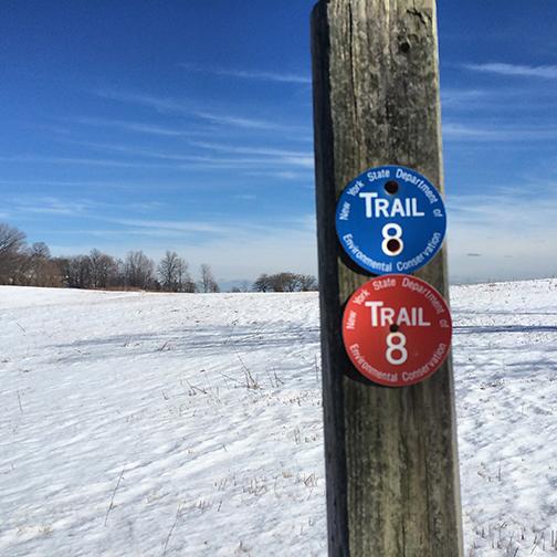 trail-tundra