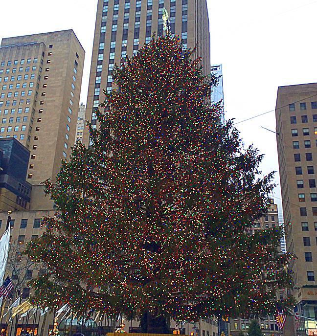 Rockafeller tree
