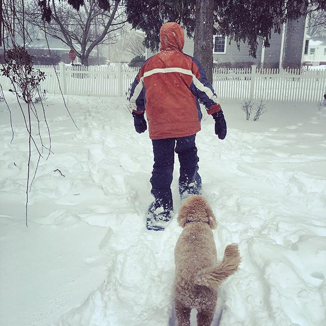 G-snowshoe