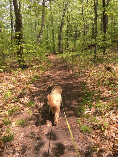 duncan-hiking