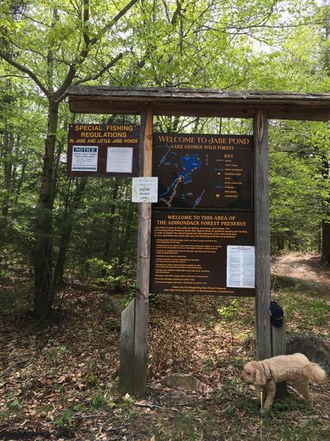 hiking-hague-ny